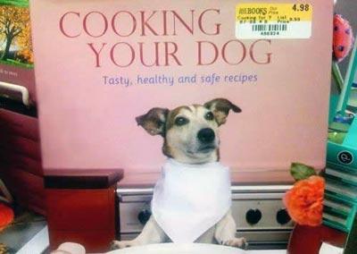 cucinare-cane